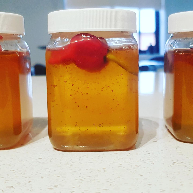 chilli honey close up - Three Dogs AU