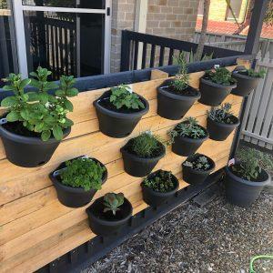 pretty practical planter boxes - Three Dogs AU