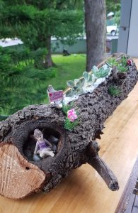 secret fairy garden succulent logs - Three Dogs AU